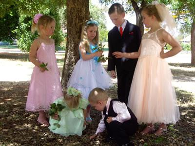 bridalwear gawler