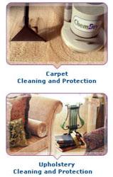 Carpet Cleaning Bondi